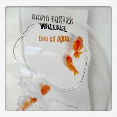 esto-es-agua-foster-wallace-random