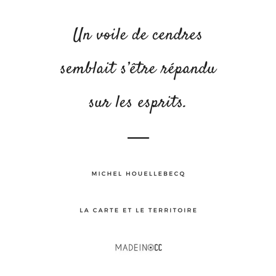 carte-territoire-michel-houellebecq-citation
