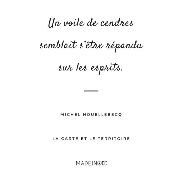 20 Citations De La Carte Et Le Territoire Michel Houellebecq Made