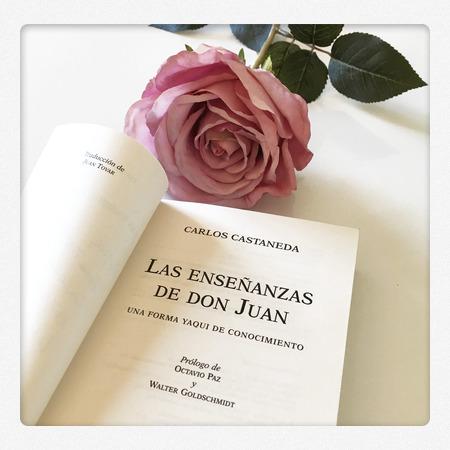 14 Frases De Las Enseñanzas De Don Juan Carlos Castaneda